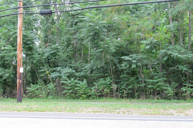 Land for Sale at Opportunity For Inexpensive Land East Hampton, New York