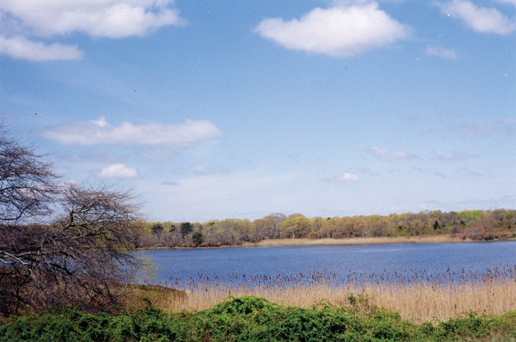 Additional photo for property listing at Contemporary In Sagaponack  Sagaponack, New York