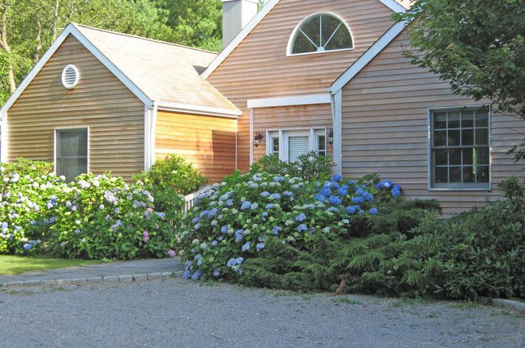 Casa Unifamiliar por un Alquiler en Charming And Convenient Bridgehampton, Nueva York