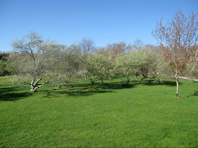 Additional photo for property listing at Ocean Views  Bridgehampton, New York