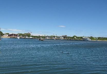 crabby cafe and marina, Montauk